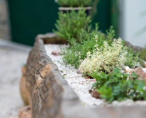 Hammerwirt in Oberalm - Sobald der Frühling da ist, pflanzen wir eigene, frische Kräuter an