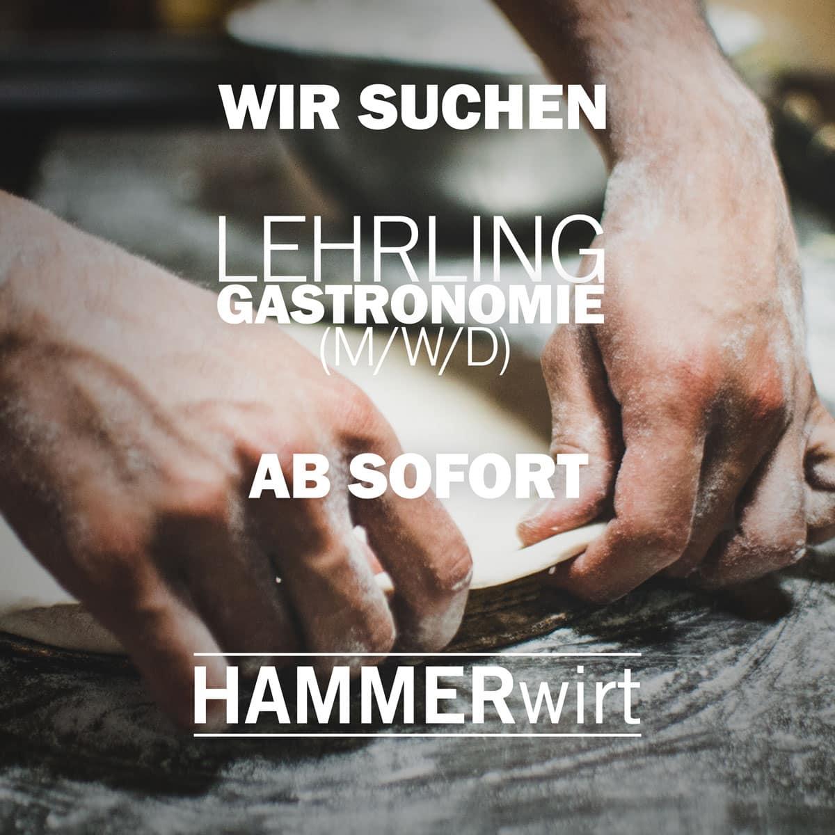 Hammerwirt Salzburg - Jobangebot - Lehrling / Azubi Gastronomie (m/w/d) - Ab sofort